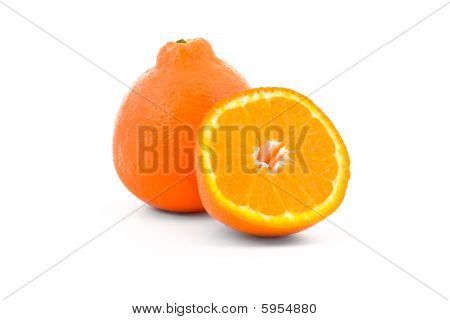 Minneola Tangelo Orange