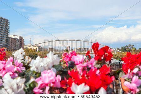 Valencia puente de Exposicion from city flowers bridge in Spain
