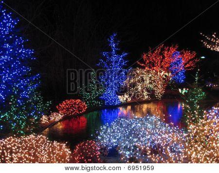 Christmas lights festival