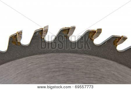 Circular Saw