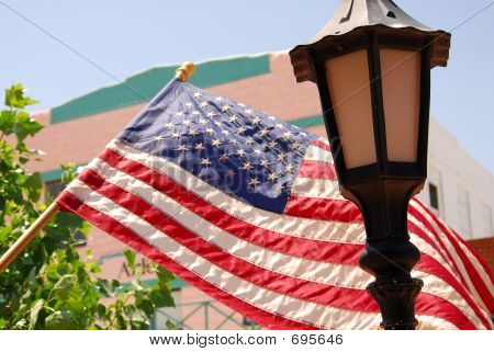 The Lighted Flag