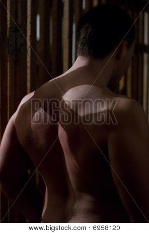 Muscular guy back