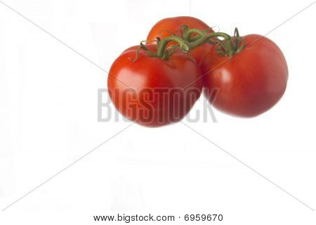 Three vine-ripened red tomatoes isolated on white background