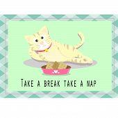 A cat is taking a break . poster