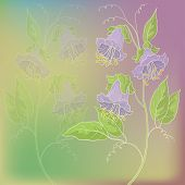 Flowers and leaves kobe on green and lilac background. Vector eps10, contains transparencies poster