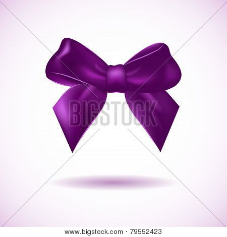 Violet bow isolated on white