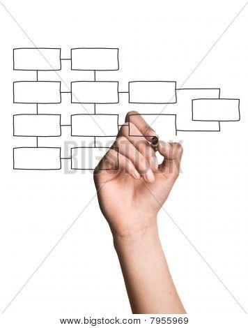 Hand Drawing Blank Organization Chart