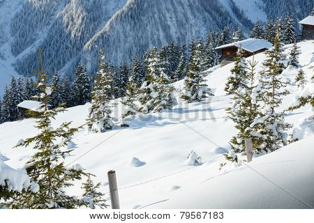 Winter landscape in Austrian Alps