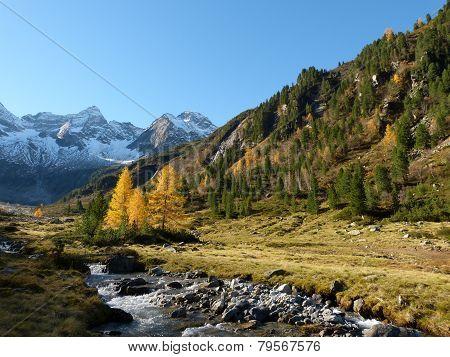 autumnal mountains