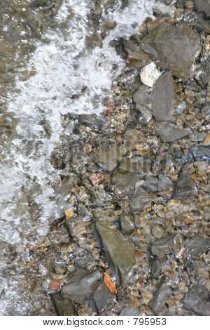 Stone Shoreline