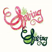 Handlettering spring in pink and green inscription pattern-model for design of gift packs, patterns fabric, wallpaper, web sites, etc. poster