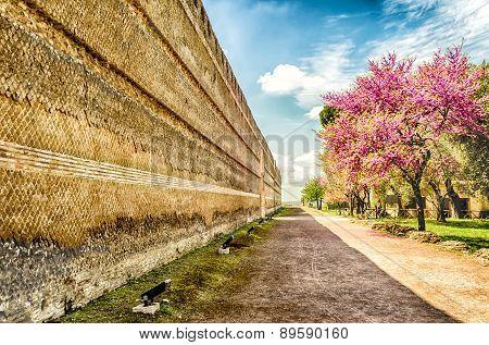 Historical Walls Inside Villa Adriana (hadrian's Villa), Tivoli, Italy