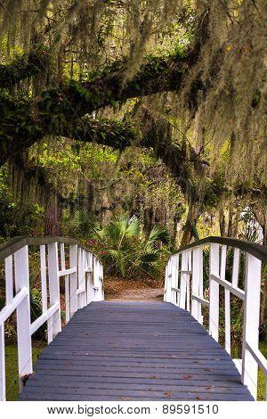 Magnolia Gardens Bridge 2