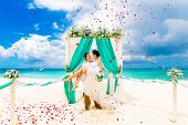 Wedding ceremony on a tropical beach in blue. Happy groom and bride under the arch decorated with flowers on the sandy beach. Rose petals fall from above. Wedding and honeymoon concept. poster