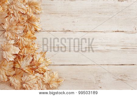 Wood Background White Leaves, Wooden Grain Texture, Decorative Plank Leaf Design