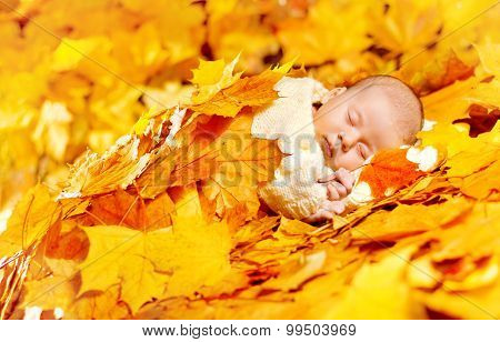 Autumn Baby Sleeping, Newborn Kid In Fall Yellow Leaves, Asleep New Born