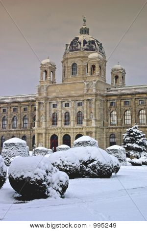 Vienna In Winter
