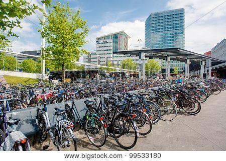 Bicycle Parking Area