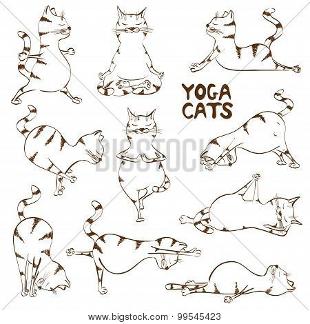 Funny Sketch Cat Doing Yoga Position.