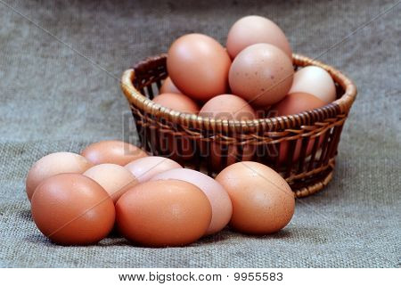 Chicken Eggs Of Brown Color In Cardboard Cells