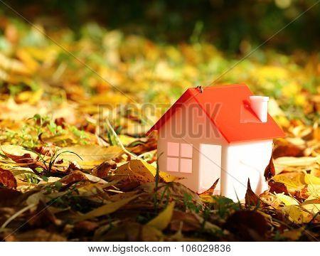 Autumn House Concept