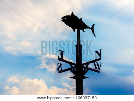 Weather vane against the sky