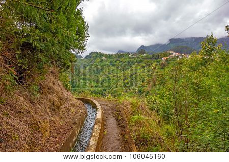 Madeira hiking irrigation channel (Levada) in green nature poster