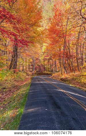 Autumn Along The Skyline Drive