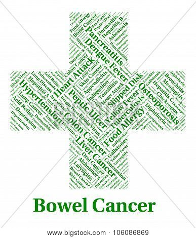 Bowel Cancer Indicates Large Intestines And Affliction