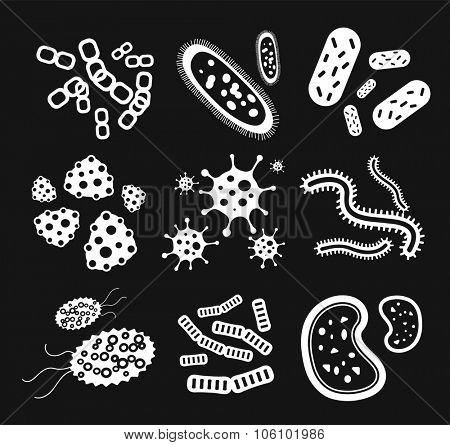 Bacteria virus black and white vector icons set. Biology microorganisms, microbes germs and bacilli. Vector pathogens icons, prokaryotes virus, bugs isolated. Virus science microbe vector icons black