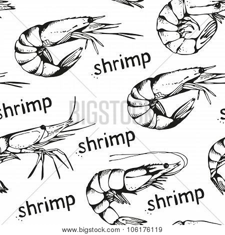 Seamless Seafood Background With Hand Drawn Shrimps On A White