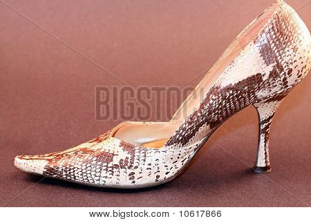 Womens Shoe High Heel Pump