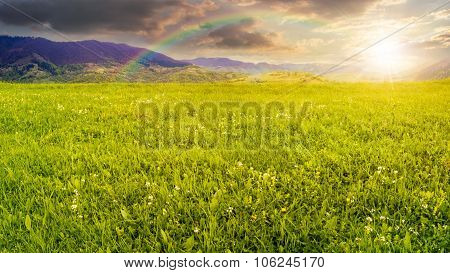 Fresh Grass  Meadow Near The Mountains At Sunset