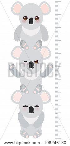 Koala. Children Height Meter Wall Sticker, Kids Measure, Growth Chart. Vector