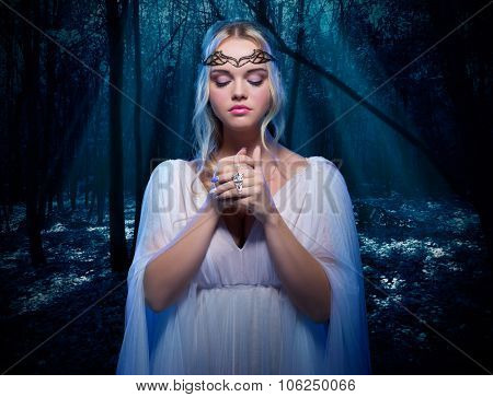Young elven girl in night forest poster