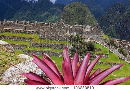 Colorful Machu Picchu