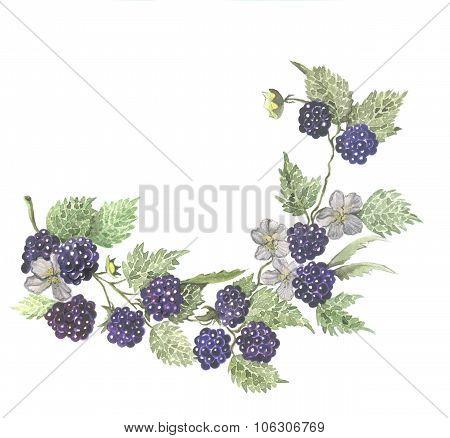 Berry wreath watercolor