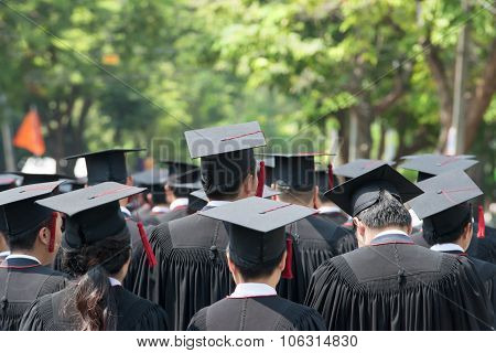 Back Of Graduates During Commencement