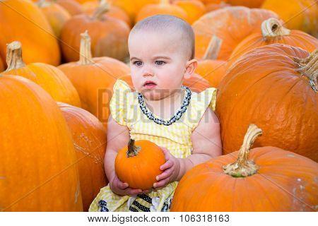 Pumpkin Patch Baby Looking Unimpressed