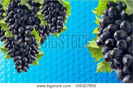 low poli background grapes