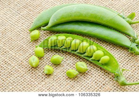 Fresh Green Peas Pods.