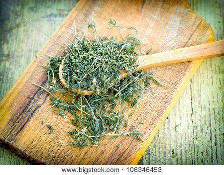 Oregano - origan (Origanum vulgare)