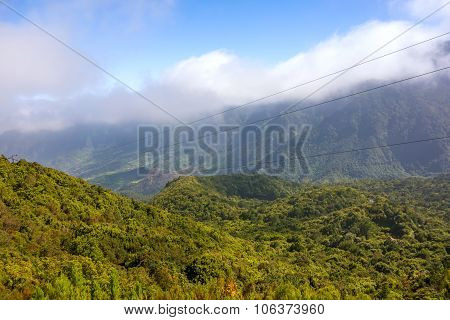 Madeira Forest Hill Valley Landscape