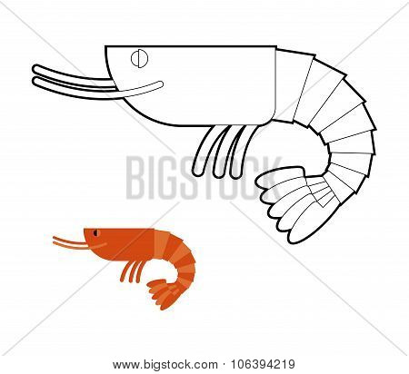 Shrimp Coloring Book. Small Marine Cancroid. Ocean Plankton.