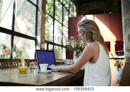 Smart blonde woman working on net-book during morning breakfast in cafe bar