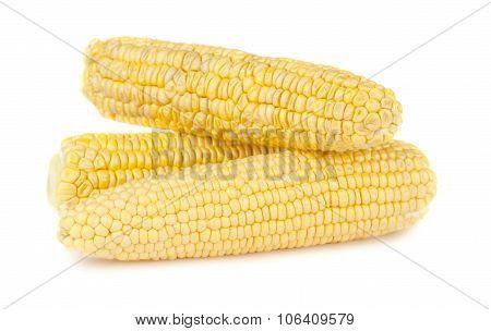 Three Ripe Yellow Corn On The Cob