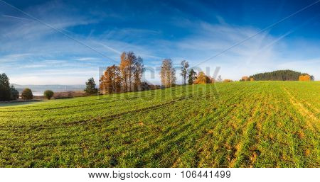 Green Field At Autumnal Morning. Panormic Landscape