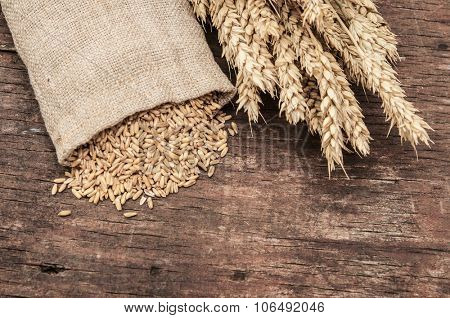 Bag full of wheat and wheat ears