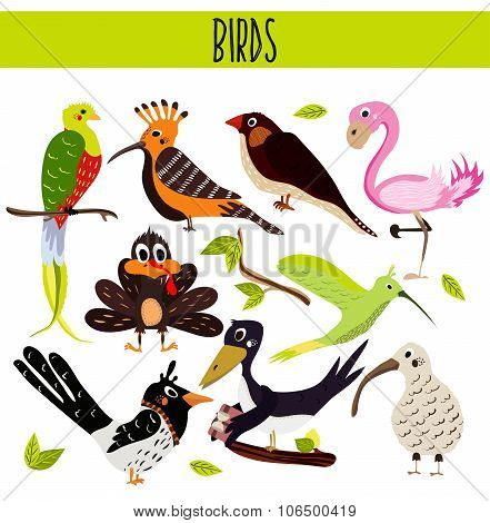 Set of Cute cartoon Animals birds living in different corners of the planet the forests and the jung