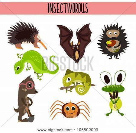 Cartoon Set of Cute Animals insectivores living in different parts of the world forests and tropical